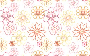 Picture white, flowers, background, vector, texture, flowers