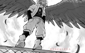 Picture wings, angel, guy, My Hero Academia, Boku No Hero Academy, My Hero Academy
