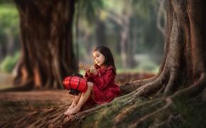 Picture trees, nature, barefoot, flashlight, girl, child, barefoot, Anastasia Barmina