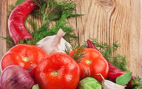 Picture greens, red, background, Board, bow, dill, pepper, vegetables, wet, tomatoes, cabbage, closeup, garlic, bulb