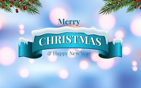 Picture photo, Branches, New year, The inscription, Vector graphics