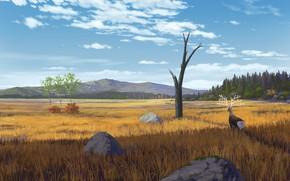 Picture landscape, nature, deer