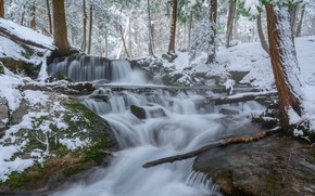 Wallpaper winter, forest, snow, stream