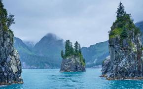 Picture Alaska, USA, Kenai Fjords National Park, Cove of Spires