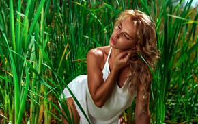 Picture greens, grass, the sun, model, makeup, dress, hairstyle, beauty, in white, nature, posing, bokeh, he …