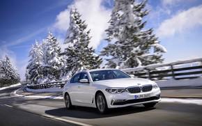 Picture white, trees, BMW, the fence, sedan, hybrid, 5, four-door, 2017, 5-series, G30, 530e iPerformance
