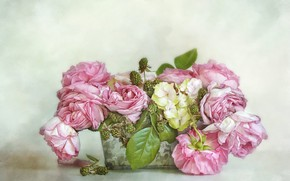 Picture leaves, flowers, berries, background, roses, bouquet, art, pot, pink, box, painting, BlackBerry