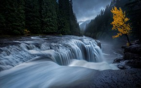 Picture autumn, forest, water, river, tree, stream, excerpt