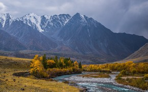 Picture autumn, trees, mountains, river