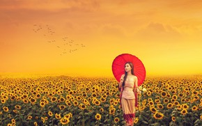 Picture summer, one, red umbrella, cute, a flock of birds, asian girl, field of sunflowers, азиатская …