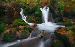 Picture stream, stones, moss, river, waterfalls, cascade