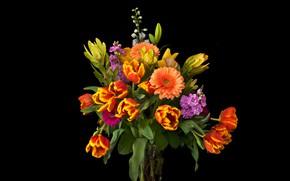 Wallpaper flowers, bouquet, tulips, vase, black background, gerbera, gillyflower, mattiola