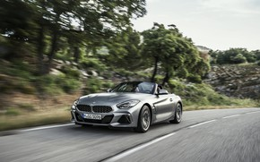 Picture trees, grey, speed, BMW, slope, Roadster, BMW Z4, M40i, Z4, 2019, G29