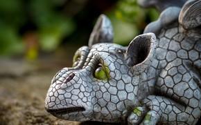 Picture dragon, sculpture, dragon