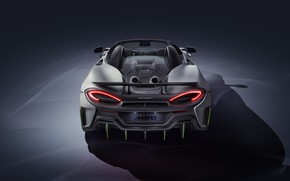 Picture McLaren, supercar, rear view, Spider, MSO, 2019, 600LT