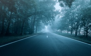 Picture road, autumn, forest, trees, fog, Park, markup, branch, dal, highway, haze, twilight, early in the …
