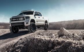 Picture Toyota, Tundra, 2019, Toyota Tundra 2019