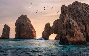 Picture sea, wave, water, birds, stones, rocks, shore