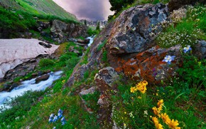 Picture landscape, mountains, nature, stream, stones, vegetation, USA, New Mexico
