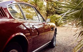 Picture Palma, wheel, mirror, car, Christoffer Rudquist, Aston Martin DB