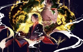 Picture butterfly, the demon, guys, horn, Hoozuki no Reitetsu, Cold-Blooded Hozuki, Hakutaku