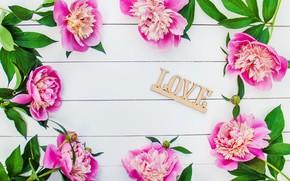 Picture flowers, love, pink, wood, pink, flowers, beautiful, romantic, peonies, peonies