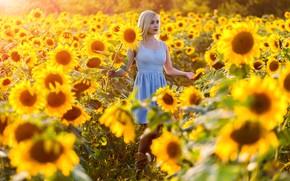 Picture look, sunflowers, model, Girl, dress, Paul Sahaidak
