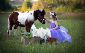 Picture horse, girl, pony