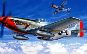 Picture Mustang, UNITED STATES AIR FORCE, North American, P-51D, long-range, American single-seat fighter