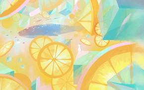 Picture rabbit, kit, girl, lemonade, ice cubes, paper airplanes, lemon slices