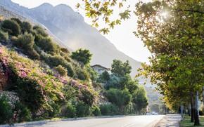 Picture summer, the sun, flowers, mountains, Turkey, Antalya, Kemer, солнечное лето
