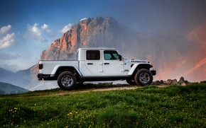 Picture white, grass, SUV, top, side view, pickup, Gladiator, 4x4, Jeep, Rubicon, 2019