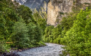 Picture greens, forest, trees, mountains, stones, rocks, Switzerland, river