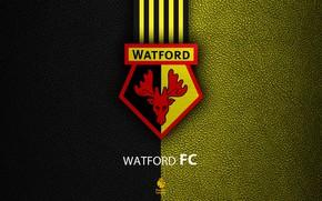 Picture wallpaper, sport, logo, football, English Premier League, Watford