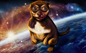 Picture space, night, fantasy, fiction, tale, art, puppy, children's, Nina Vels, Little star