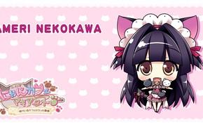 Picture girl, cutie, kitty, Nyan Cafe Macchiato