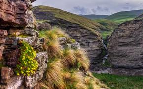 Picture grass, landscape, mountains, nature, stream, stones, rocks, hills, Iceland, national Park, Юлия Шумляева, Тингведлир