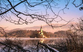 Picture winter, snow, landscape, mountains, branches, nature, lake, Church, forest, Slovenia, Lake bled, Bled