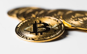 Picture coins, gold, bitcoin