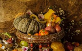 Picture flowers, harvest, pumpkin, fruit, still life, vegetables, autumn, still life, pumpkin, vegetables, harvest