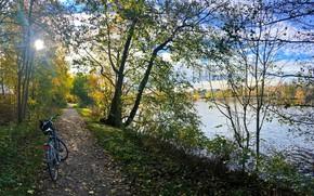 Wallpaper autumn, forest, grass, leaves, the sun, trees, bike, Park, river, shore, path