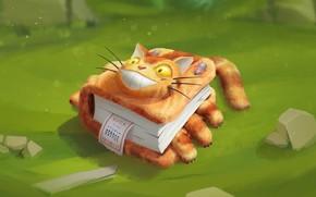 Wallpaper cat, mouse, art, book, children's, fantasy, Vitaly Latypov