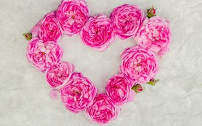 Picture love, flowers, heart, roses, petals, love, pink, heart, wood, pink, flowers, petals, roses, floral