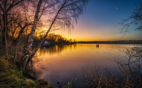 Picture autumn, trees, landscape, nature, lake, the evening, birch
