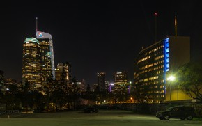 Picture trees, night, lights, lawn, building, home, lights, USA, skyscrapers, Los Angeles