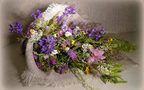 Picture background, bouquet, wildflowers