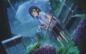 Picture flowers, rain, frog, umbrella, girl, railings, flowerbed, the shower, hydrangea