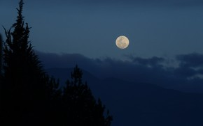 Picture the sky, trees, mountains, nature, the moon, the evening, the full moon