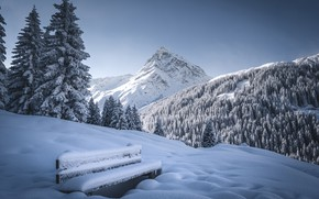 Picture winter, forest, snow, trees, mountains, bench, Austria, ate, Alps, top, the snow