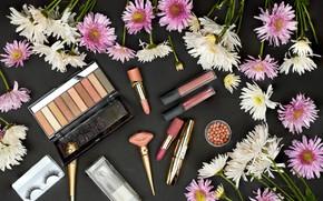 Picture flowers, table, shadows, chrysanthemum, cosmetics, lipstick